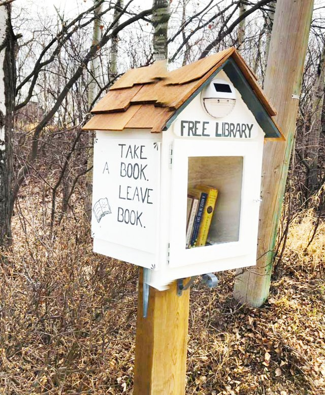 free library - carol daniels - may 04.jpg