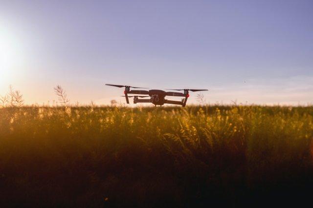 air-aircraft-camera-cropland-442589.jpg