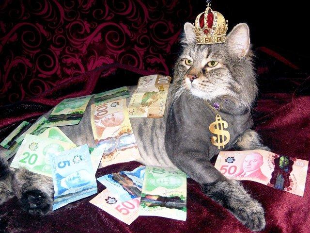 canadian money.jpg